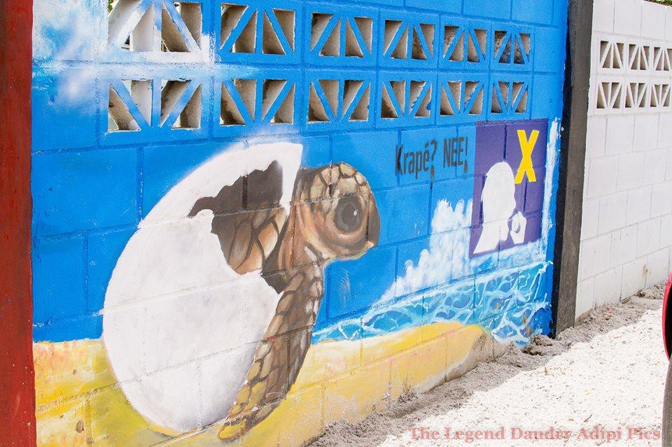 Red de zeeschildpadden te Braamspunt