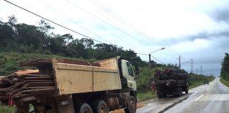 SBB neemt trucks met hout in beslag