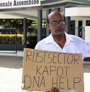 Protest om ongunstige opkoopprijs van padie in Suriname