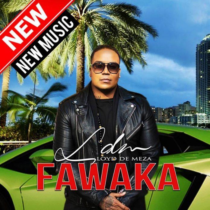 Nieuwe EP Lloyd de Meza getiteld 'Fawaka'