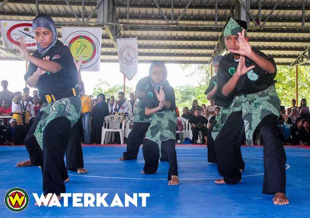 Suriname wil Pentjak Silat expertise uit Indonesië