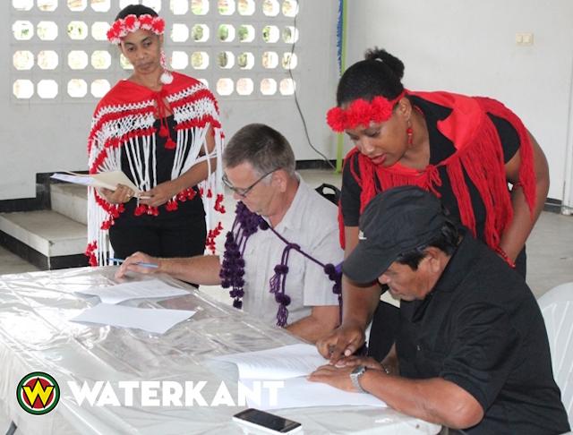 Inheemse Ananas telers Powakka verzekerd van afzet