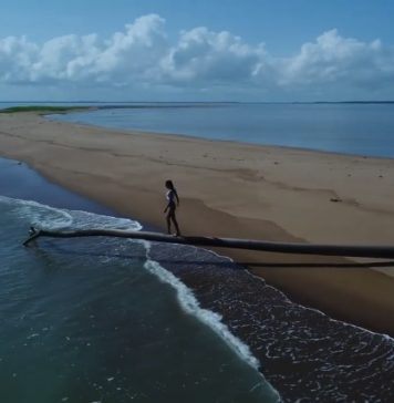Adembenemend drone filmpje van natuur in Suriname