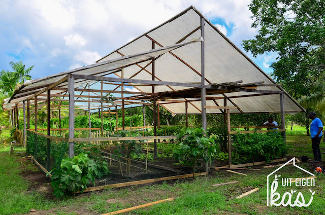 Plantenkas op Barronschool bevorderd landbouw in Moengo