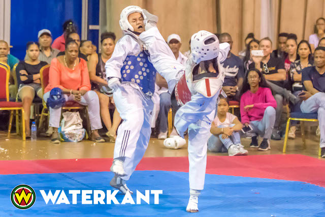 International Taekwondo Tag Team Tournament in Suriname