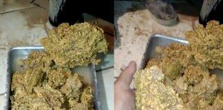 Oud filmpje wakkert goudkoorts in Suriname aan