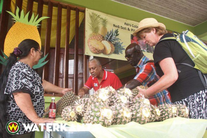 Ananasboeren in Suriname krijgen financiële steun van ministerie