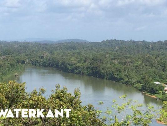 Suriname rekent op 'boscompensatie' na goedkeuring milieuverdrag van Parijs