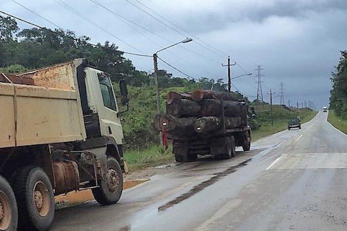 Bosbeheer Suriname onderschept weer illegaal hout