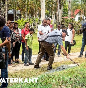 Start verharding 24 kilometer lang historisch fietspad in Suriname
