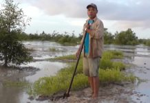Launch van documentaire over mangrove in Suriname