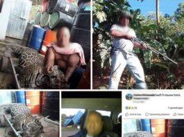 Lid gewapende machten Suriname poseert met dode jaguar