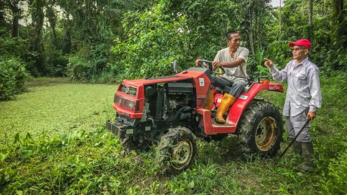 Peperpot Natuur Park in Suriname werkt aan een nieuwe toekomst