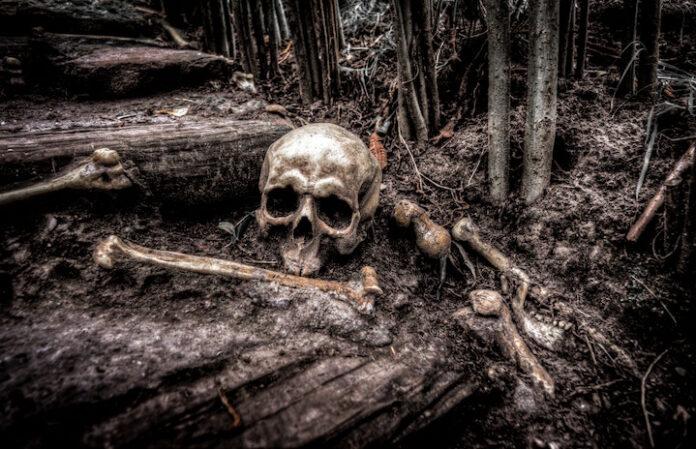 Skelet van in Suriname vermiste man aangetroffen te Kwakoegron