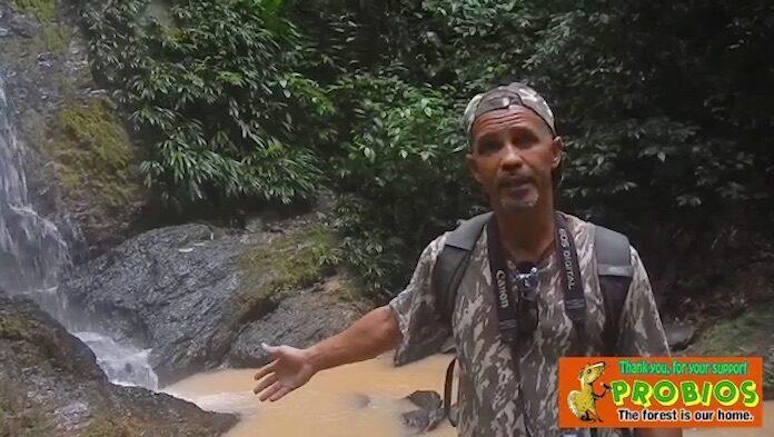 Zware vervuiling van Irene vallen in Suriname door goudzoekers