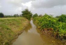 Infrastructuur Regio-West Nickerie aangepakt door ministerie van LVV in Suriname