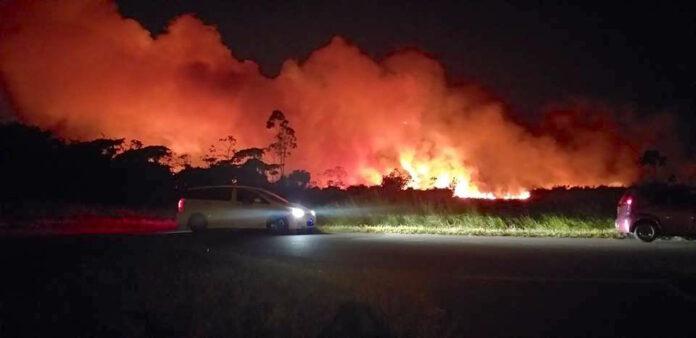 Brandweer Suriname uitgerukt voor grote bosbrand in Paramaribo-Noord
