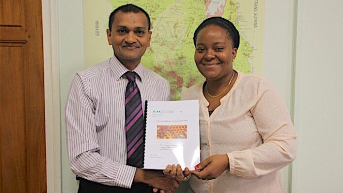Afstudeeronderzoek 'exportmogelijkheden voor Surinaamse honing'