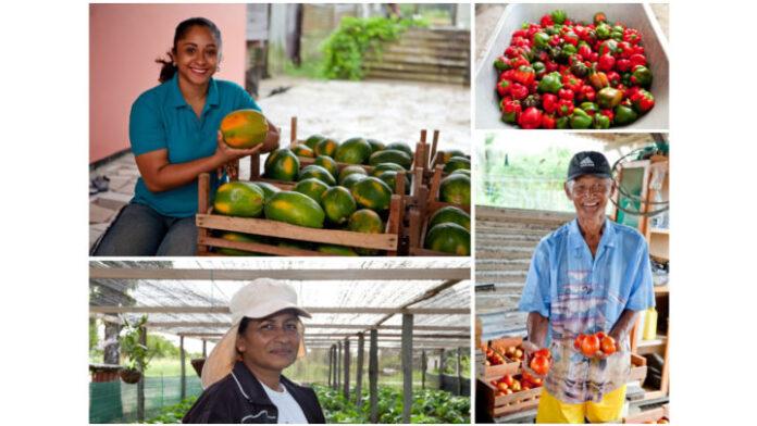 Award voor meest duurzaamste mkb-landbouwbedrijf in Suriname