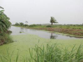 Kanalen in landbouwgebied Weg naar Zee opgehaald