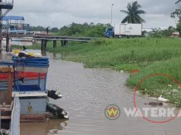Lijk van man opgevist uit Suriname rivier