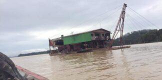 Skalian in stuwmeer van Suriname