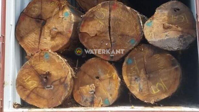1.500 kilo cocaïne in container uit Suriname met boomstammen