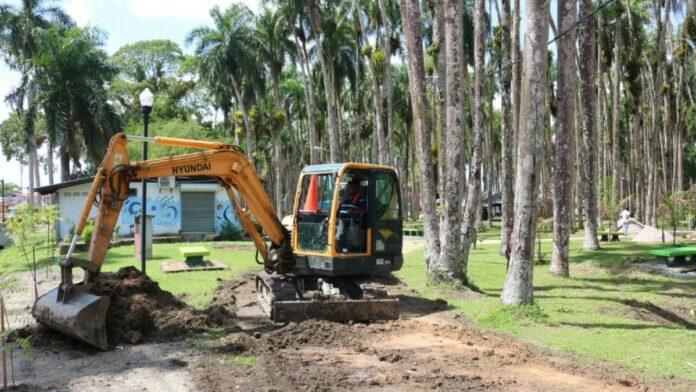 palmentuin wordt opgeknapt