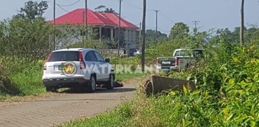 VIDEO: Lijk van doodgeschoten man langs de weg gev