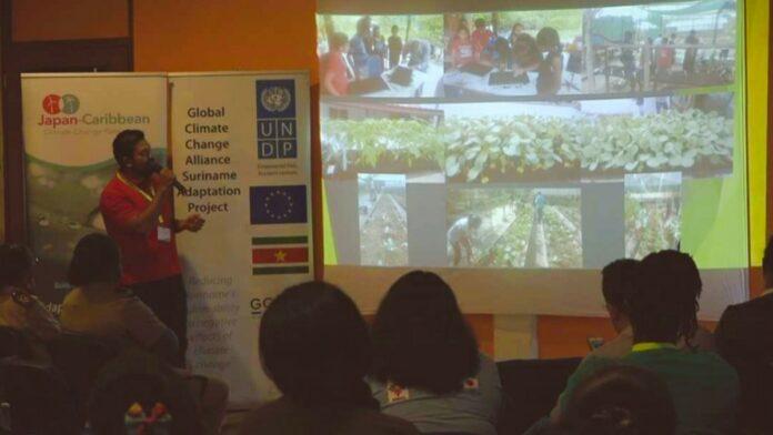 LVV traint kindertehuizen in onderhoud en gebruik van plantenkassen