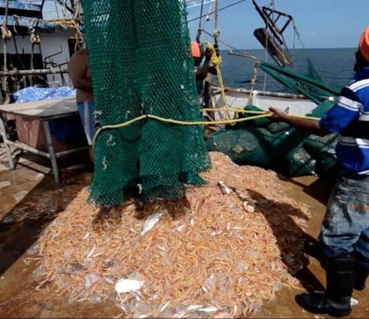 VV-minister Parmessar installeert Seabob Commissie in Suriname
