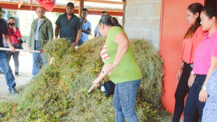 LVV-medewerkers district Commewijne getraind in aanmaken compost