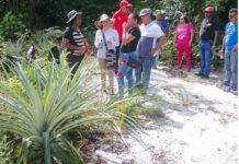 Landbouwdeskundigen raden 'platbranden' van akkers af