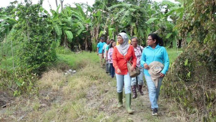 Landbouwvoorlichters en groenteverbouwers Nickerie getraind door LVV