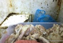 Opnieuw onhygiënisch fast food restaurant in Suriname gesloten