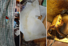 Zoveelste smerig restaurant in Suriname gesloten
