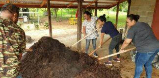 LVV: Compostproductie Tamansarie verloopt vlot