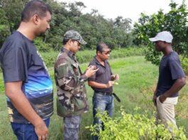 LVV voert landbouwvoorlichting district Saramacca op