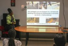 Wegenautoriteit legt looppad aan voor blinden en slechtzienden