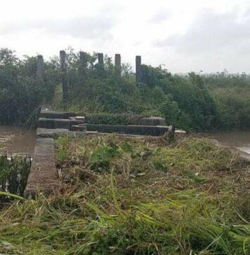 Aanpassingen Railliesluis voor meer zoetwater naar rijstarealen