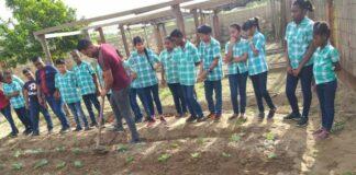 Plantenkas opgezet op OS Pomona door landbouwvoorlichters