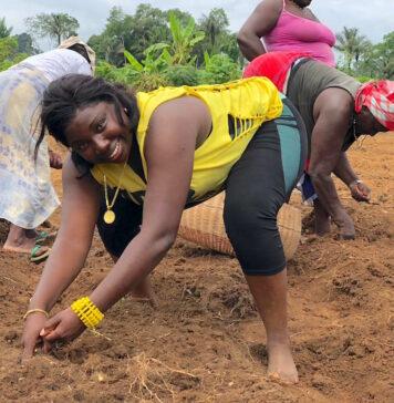 ABOP breidt landbouwgrond in Sipaliwini uit naar 25 HA