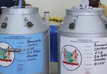 'Geen stembussen met reeds ingevulde stembiljetten verstrekt voor binnenland'