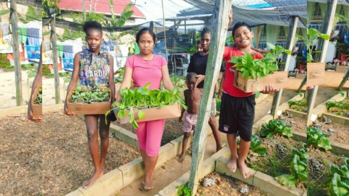 Landbouwvoorlichters Regio-Oost zetten moestuin op bij kindertehuis