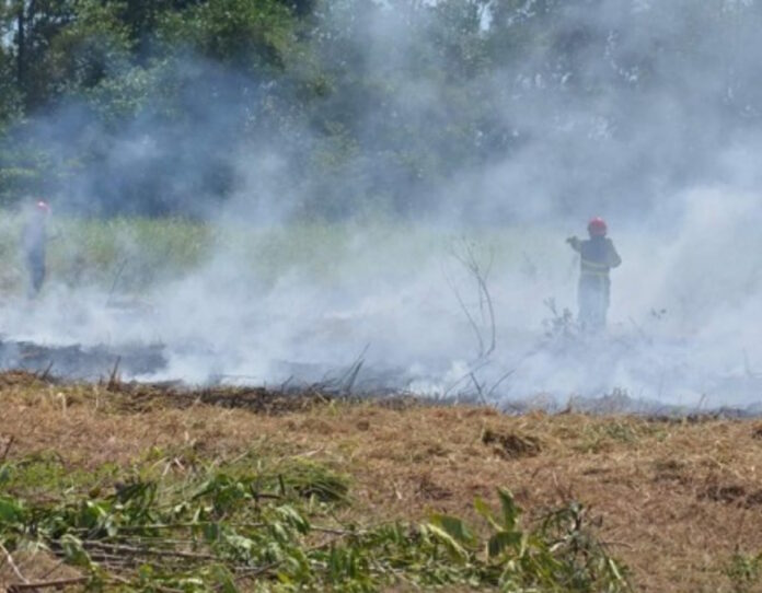 Stijging meldingen van gras-en vuilverbrandingen in Suriname