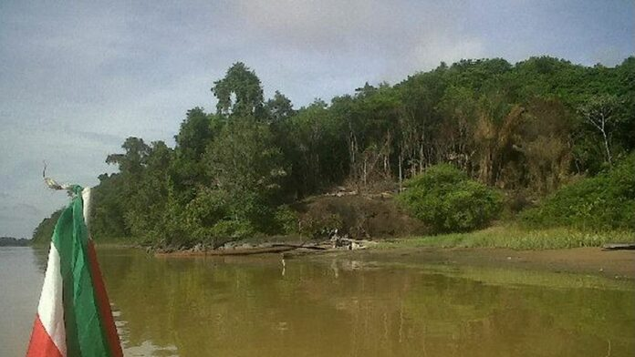 Mopi Kondre aan de Marowijne rivier in Suriname