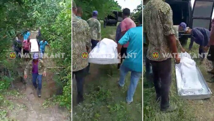 Veehouder dood aangetroffen op terrein in Nickerie