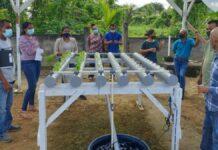 Landbouwvoorlichters en landbouwers Commewijne krijgen basistraining hydroponic systemen