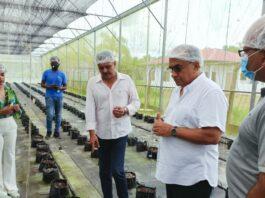 Minister Sewdien brengt bezoek aan kassenteelt bedrijf