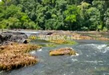stroomversnelling-water-rivier-suriname